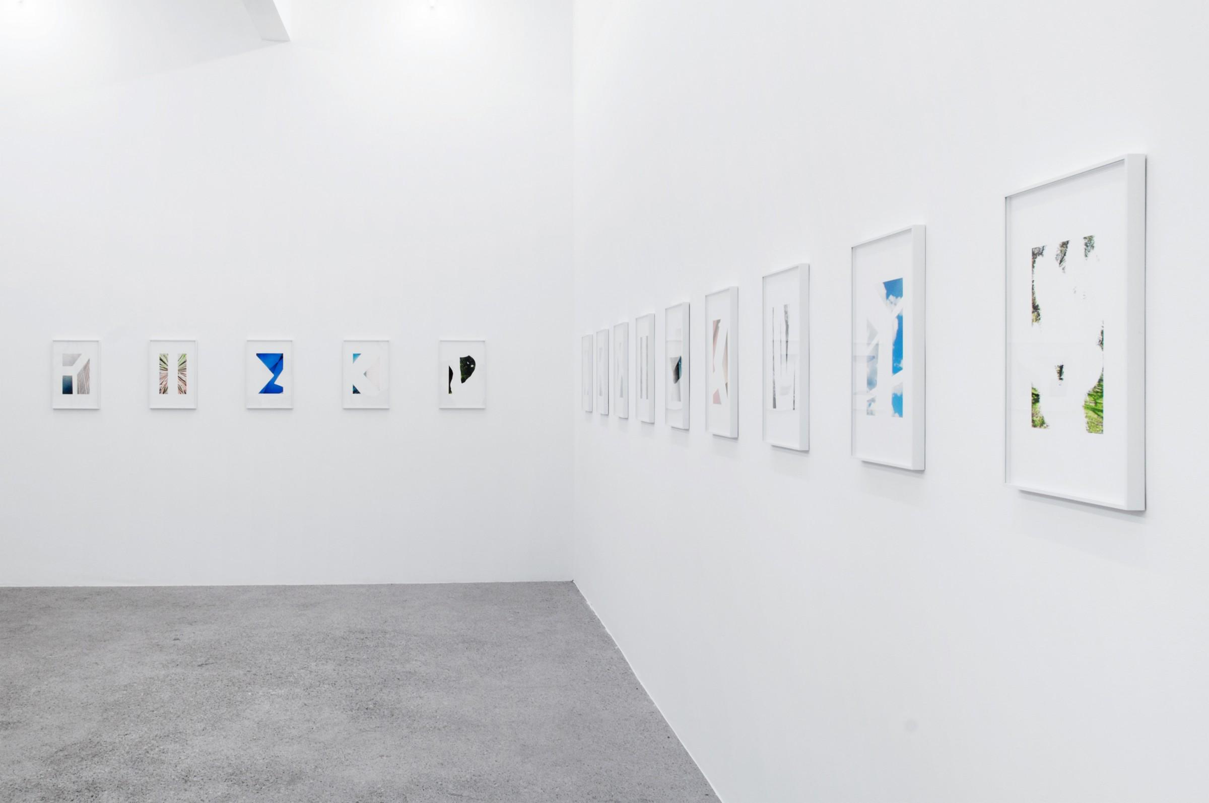 Big Fish, Rotwand Gallery, 2012
