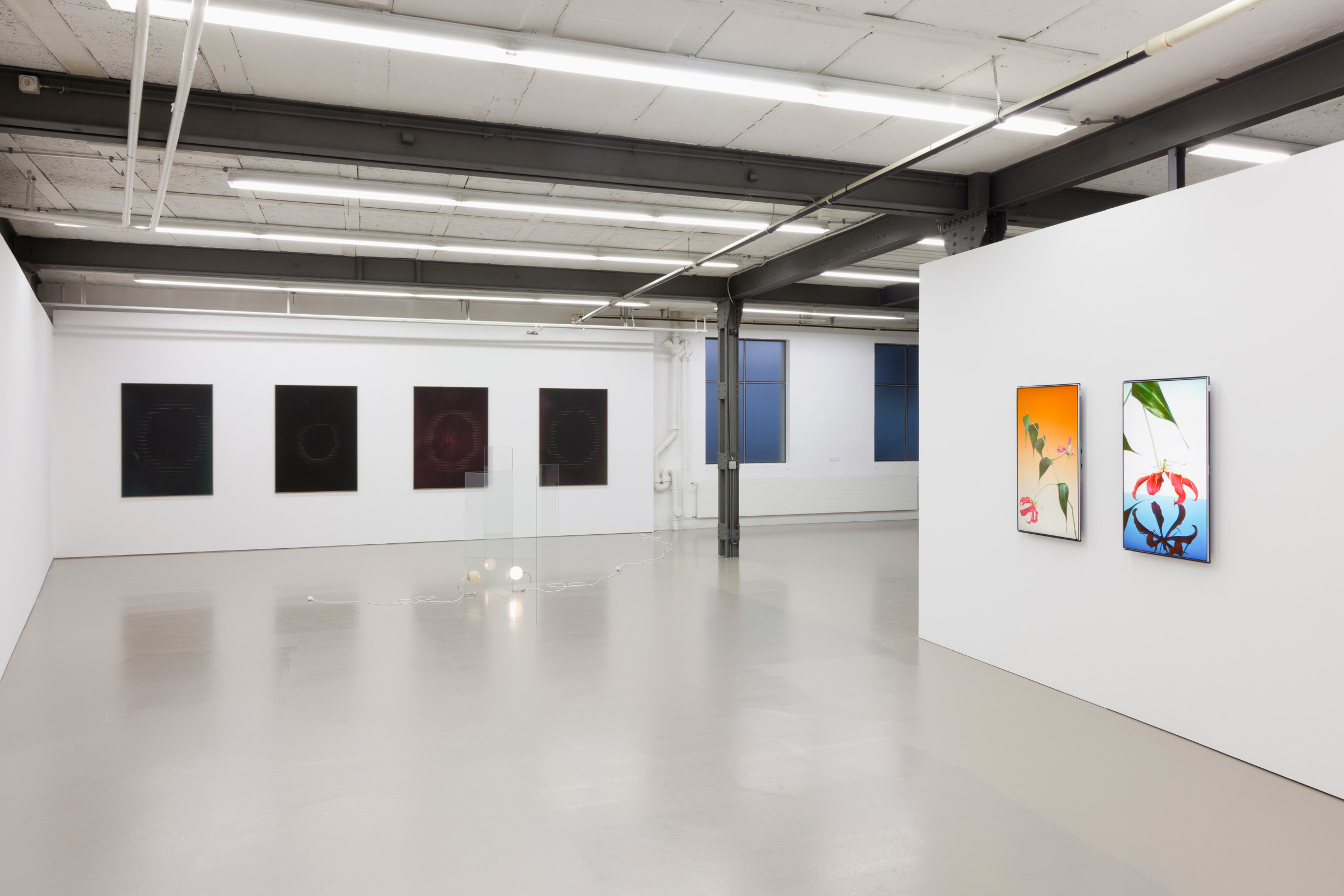 New Existentialism, Kurator, 2011